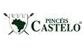 Pincéis Castelo